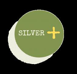 SILVER+ Newsletter #5